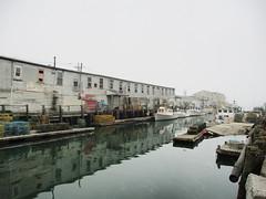 Harbor Fish Market (mathieu.forcier) Tags: sea ocean fishing simple contemporary banal building dock emptiness minimalism minimal port portland maine