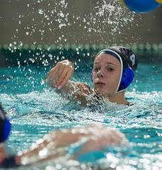 1A150271 (roel.ubels) Tags: uzsc zpb hl productions waterpolo eredivisie utrecht krommerijn 2016 sport topsport