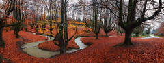 Otzarreta (Sergio Nevado) Tags: hayedo haya otzarreta bizkaia vizcaya pais vasco euskadi paisaje landscape nature naturaleza pano panoramica panoramic arbol tree rio river larga exposicion long exposure