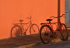 Cai a tarde em laranjas (Márcia Valle) Tags: afternoon tarde laranja orange bike bicicleta caravelas bahia brazil brasil márciavalle nikon sombra shadow