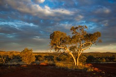 Late Afternoon at Hope Downs (garry_dav) Tags: mpt509 matchpointwinner