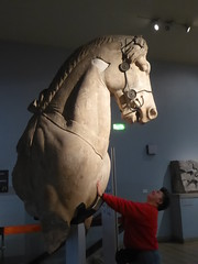 With the Mausoleum Horse (Aidan McRae Thomson) Tags: britishmuseum london greek statue horse sculpture halicarnassus mausoleum