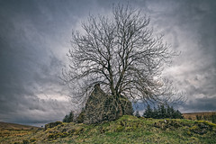 Trials come and clouds arise (Perkvats Havatkov) Tags: eosm tree cottage ruin derelict sky clouds