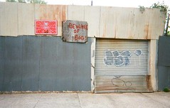 Pacific Av, Bedford-Stuyvesant (slo:motion) Tags: brooklyn ny 718 bedfordstuyvesant bedstuy kingscounty bewareofdog abandoned graph graffiti streetart art rust rusty newyorkcity newyork nyc