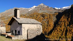 Liturgy of beauty (_Nick Outdoor Photography_) Tags: img8331 fall autumn liturgy valledaosta parconazionaledelgranparadiso pngp nickphotography hiking larches alpinevalley rhemesnotredame chiesetta alpeggio malga frazione