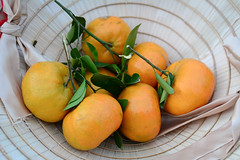 Mandarin, tangerine, citrus fruits (phuong.sg@gmail.com) Tags: circle citric citrus closeup color cross cut diet edible food fresh freshness fruit group healthy heap ingredient juice juicy lifestyle mandarin natural nature object orange organic raw refreshing refreshment ripe round section segment skin slice sliced sweet tangerine taste tasty vitality vitamin yellow