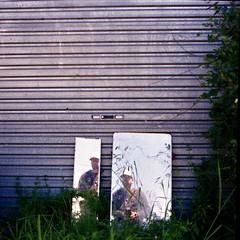 Self Reflecton (latex) (Steve Wheadon) Tags: film selfportrait colour 120mm found mirror portrait 6x6 mediumformat garage scrub shrub rustic naturallight