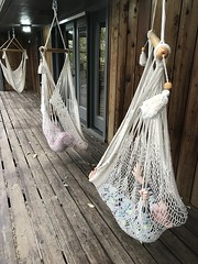 Hammock Critters (The Spohrs Are Multiplying...) Tags: fixer upper
