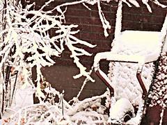First snowfall seen from South window (~nevikk~) Tags: snow windowshot firstsnowfall kevinkelly neighbors