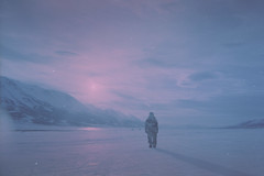 (ystein Aspelund) Tags: silhouette midnightsun arctic winter may snow travel landscape nature wild shadow sun light color 35mm analogue film expired norway nordic svalbard