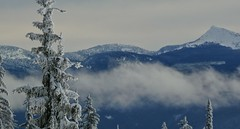 Mountains (Eddie the Explorer) Tags: mountains bc britishcolumbia canada landscape trees snow winter bigwhite