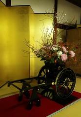 Omuro IKEBANA (maco-nonchR(on/off)) Tags: ninnaji temple omuro omuroryu ikebana arrangement flower entrance    kyoto  kioto gold manualexposure