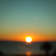 LA sun set (Jodie Dobson) Tags: sunset orange sun square bokeh teal palmtree crop lensflare