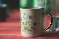 041/365 (The Fromans) Tags: cup coffee vintage photography tea 365 jufroh