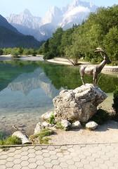 Jasna Lake Billygoat (Michael R Perry) Tags: slovenia slovenija triglav triglavnationalpark triglavskinarodnipark triglavski