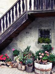 Champorcher (Skunky Sku) Tags: wood flowers mountain balcony fiori montagna legno balcone baita valledaosta vasi champorcher