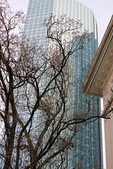 Deutsche Bank Tower im Westend (S. Ruehlow) Tags: city frankfurt westend frankfurtammain innenstadt ffm guiollettstrase