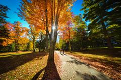 Autumn Colors (ssgmacdawg12345) Tags: college paul nikon shane adirondacks smiths psc garlock d3100