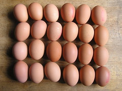 Londis Morning Fresh 6 L Eggs x4  - Eggs (Lord Inquisitor) Tags: brown eggs londis eggcarton eggbox heneggs vision:text=057