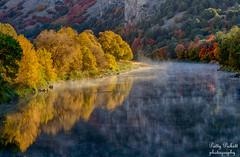 along the Oneida Narrows Road, Idaho (Pattys-photos) Tags: fall foggy idaho oneidanarrowsreservoir