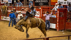 20131108 5DIII Davie Pro Rodeo207 (James Scott S) Tags: girls horses sport cowboys speed canon scott photography eos james is high florida action mark no flash barrel fast 8 competition s bull racing bulls riding ii rodeo hi fl cowgirls davie broncos 70200 eight f28 ef seconds weekley 5diii