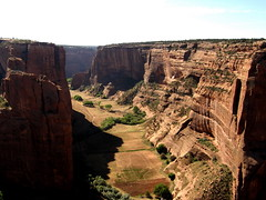 CANYON de CHELLY - Navajo Farms (robinb44) Tags: pueblo oasis tribe canyondechelly anasazi nationalmonument indigenous oases canyondechellynationalmonument spiderrock ussouthwest nationalregisterofhistoricplaces navajonations utahjuniper monumentcanyon chuskamountains usnationalparksservice whitehouseruintrail delmuerto ancientpueblopeoples newmexicanpine