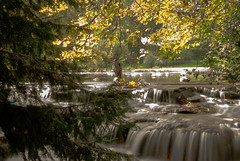 Heron in a Waterfall (Louisa Giordano) Tags: park heron water waterfall slowshutter