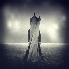 Untitled (Kaveh Hosseini) Tags: tree art photoshop dark death blackwhite mood darkness surrealism creative surreal editing fineartphotos