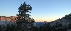 Half Dome - Yosemite National Park - California - 11 July 2013 (goatlockerguns) Tags: california park trees usa mountains west nature clouds america natural unitedstatesofamerica yosemite halfdome yosemitenationalpark sierranevada tenaya fairfielddome