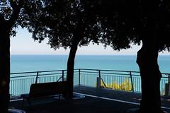 Sirolo (MikePScott) Tags: camera trees sea italy bench lens coast italia structures marche adriatic ancona holmoak lemarche topography builtenvironment quercusilex sirolo nikon2470mmf28 nikond800 featureslandmarks