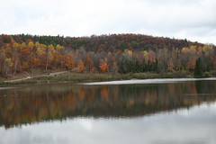 Parc Omega (hpeniche) Tags: canada reflection fall water quebec fallcolors parcomega