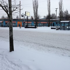 "IMG_2058 (Lynette_1_2_3) Tags: ""cold weather"" ""snow"" ""wind"" ""february ""©portlandoregondailyphoto 2014"""