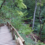 Unterhalb der Rügener Kreidefelsen auf Holzstufen hinab zum Ostseeufer (1) thumbnail