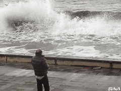 Desafiendo la naturaleza (Franchipack) Tags: naturaleza mar galicia gaviota ola viveiro ría covas desafiando