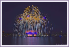 Fourth of July Fireworks (Aurora Santiago Photography) Tags: seattle fireworks lakeunion 4thofjuly gasworkspark