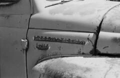 international (nickademusss) Tags: white black rot film truck self project rust delta international 100 developed ilford fpp photogropy