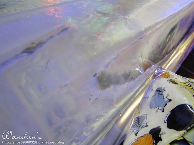 DSC 2014急凍樂園06522
