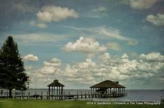 Summer Cloudscape
