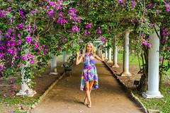 DSC_5384 (sergeysemendyaev) Tags: 2016 rio riodejaneiro brazil jardimbotanico botanicgarden     outdoor nature plants   flowers   green  beauty