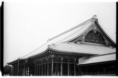 Acros100-2-28 (splendid future) Tags: kyoto yenlifefilm film filmphotography    filmlover nikon f3 fujifilm acros100