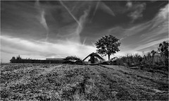 country road II... (lubokl47) Tags: czech landscape eos50d smctakumar1855mm pentax village road tree building house field fence bw manuallens