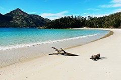 Wineglass bay beach - Tasmania - Australia (pacoalfonso) Tags: pacoalfonsocom travel australia tasmania nature landscape beach wineglass bay