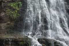 DSC_0637 (Axisworks) Tags: alamerefalls california coasttrail marin marinheadlands palomarintrail cliff hike nature rocks splashing trail water waterfall