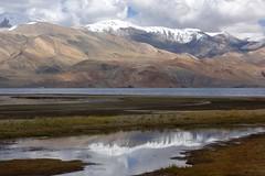 Lake Tso Moriri, India 2016 (reurinkjan) Tags: india 2016 janreurink himachalpradesh spiti kinaur ladakh jammuandkashmir kargil tsomoriri himalayamountains himalayamtrange himalayas landscapepicture landscape landscapescenery mountainlandscape