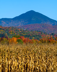 Green Mountains (Somuchtwosay) Tags: fall foliage vermont