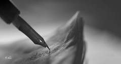 """""""All you need is LOVE...."""" (Catching_alchemic light) Tags: pen paper page love write writing maco dof depthoffield close sharp selectivefocus pages bw lyric song cmwd"""