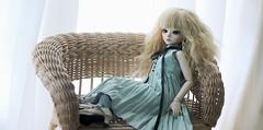 AIMG_0868 (Tinn Chun) Tags: bjd doll bluefairy tinyfairy robin
