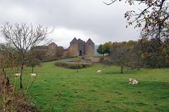 2016-10-24 10-30 Burgund 178 Berze-La-Ville