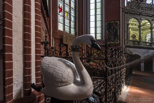 Doberaner Münster • Schwan und Hirschgeweih aus der Kloster-Gründungslegende