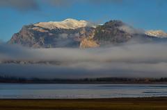 Grand Teton National Park (nebulous 1) Tags: gtnp grandtetons grandtetonnationalpark grandtetonnp jacksonlake landscape nature water trees grass nikon nebulous1 glene